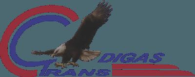 Digas Trans LLC